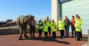 Morecambe Carnival Volunteers - Morecambe Carnival Committee