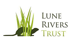 Lune Valley Trust - Morecambe Carnival Trees and Bees