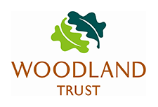 Woodland Trust - Morecambe Carnival Trees and Bees